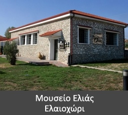 Oil - Olive Museum of Elaiochori