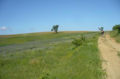 Οικολογικό μονοπάτι Plevun – Meden buk – Byala reka
